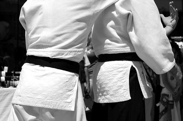 aikido umění